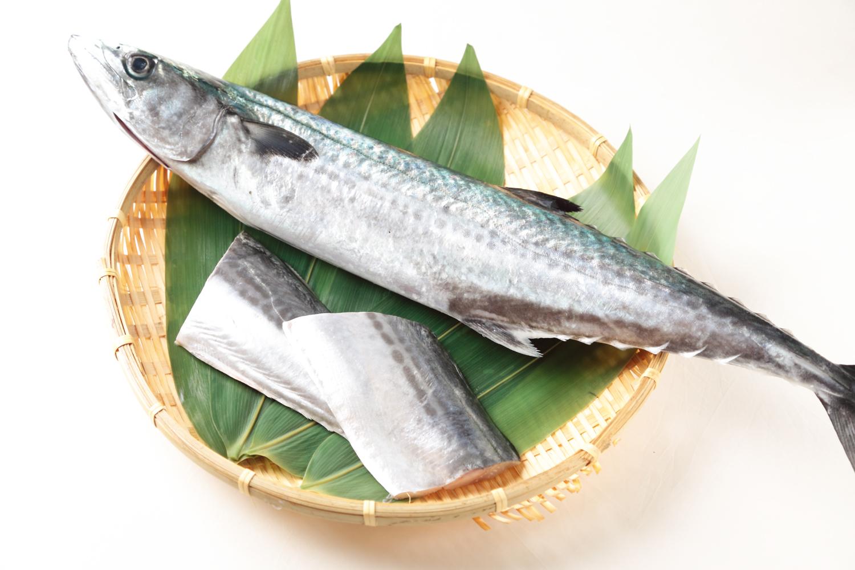 fish201302